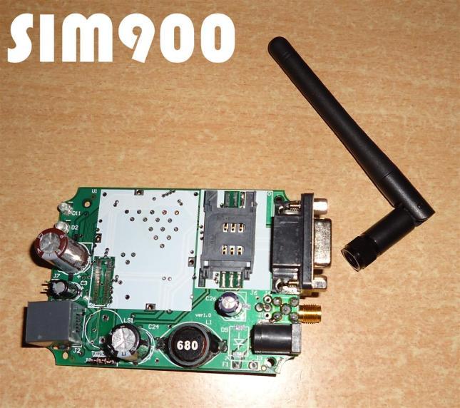 DSC01988 (Large)